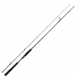 Canne Spinning Prorex AGS 2.44 M 14-42 G 802 HFS PXAGS802HFSBF Canne Daiwa nouveauté 2021