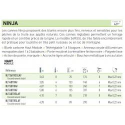 Canne à pêche faible encombrement telereglable Ninja Canne Daiwa chez pecheur peche com catalogue Daiwa 2019 2020