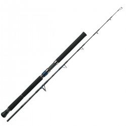 Promotion Canne Daiwa Saltiga Jigging 1.73 M 180-400 G Canne Air Portable 58 XXH acheter chez pecheur peche com