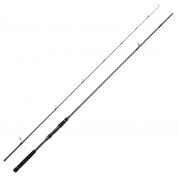Canne Spinning Daiwa Labrax AGS 2.89 M 10-50 G 96 M Canne Daiwa nouveauté 2020