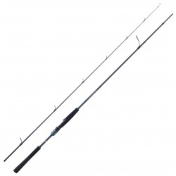 Saltist AGS II Seabass Edition Daiwa Saltist 2.74 M 14-42 G 902 H SLTAGS902HFSBF pecheur-peche com