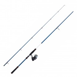 Pack 2.20 M 10-35 G Regal PET 3000 HE Leurre Tsuki 05 Tresse Daiwa
